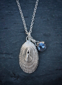 Sea and Stone Jewelry -  A dainty sterling silver limpet shell pendant, embellished with a corundum-sapphire briolette,  hangs from a silver chain necklace with a lobster clasp.
