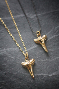 Sea and Stone Jewelry - Yellow gold vermeil shark teeth necklaces on blackened silver or shiny vermeil chain