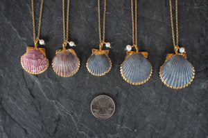 Scallop Shell, Pearl, & Cable Chain Necklace