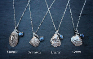 Tiny Silver Shell Necklace