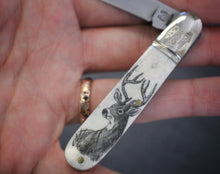 A pocket knife with one blade that nestles into a compact scrimshaw handle made of ethically sourced bone, with an artfully etched buck deer design. Displayed in a hand.