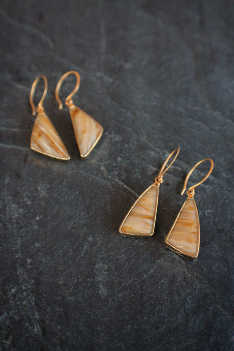 sea and stone jewelry Petrified Palm Wood Earrings