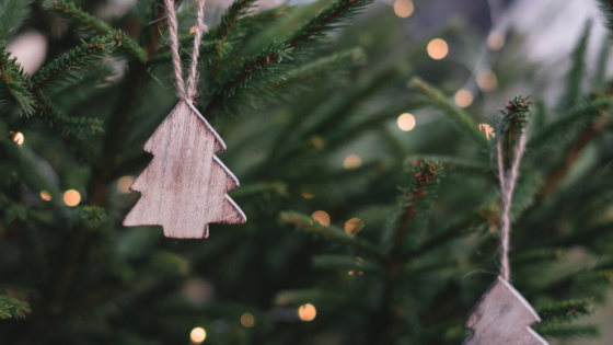 Christmas Tree Care and After-Christmas Ideas