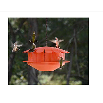 Humm-Bug Hummingbird Feeder