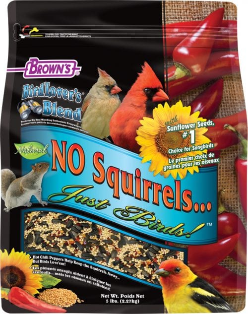No Squirrels Just Birds with Sunflower Seeds, 5lbs