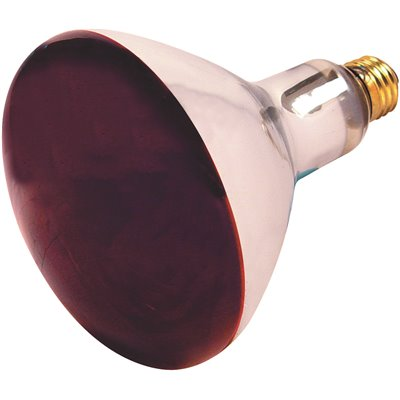Satco Red Heat Lamp Bulb 250w