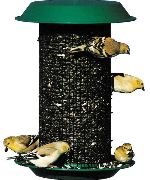 Magnum Black Oil Sunflower Seed Feeder