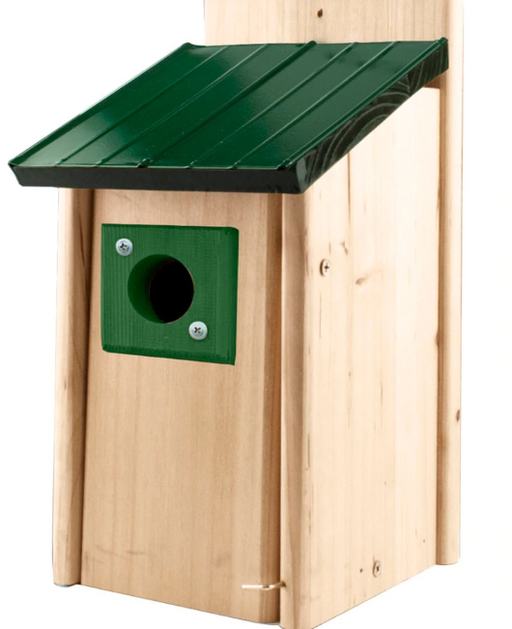 Lake & Cabin Bluebird House w/ Green Metal Roof & Predator Guard
