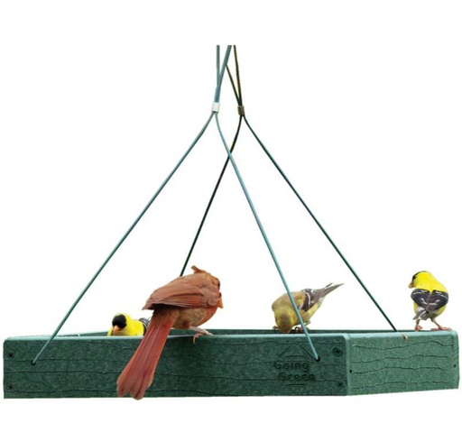 Green Hanging Platform Feeder, 12.75 x 12.75 x 2.5""