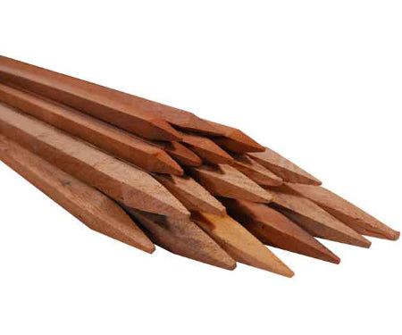 Wood Stakes 6 Pack