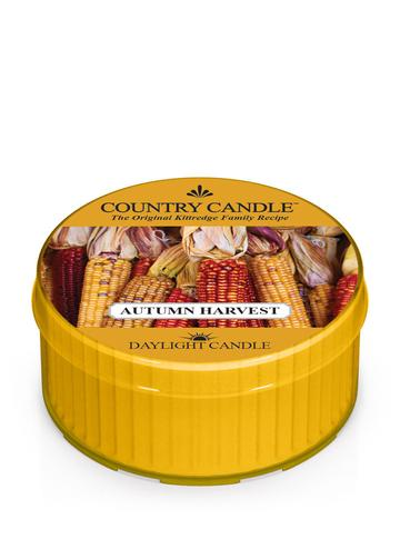 Country Candle by Kringle, Autumn Harvest, Single Daylight