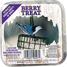 Craft Berry Suet Treat, 11oz