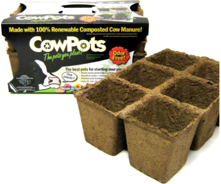 "CowPots 6 cell 3 pack 9.25"" x 6"""