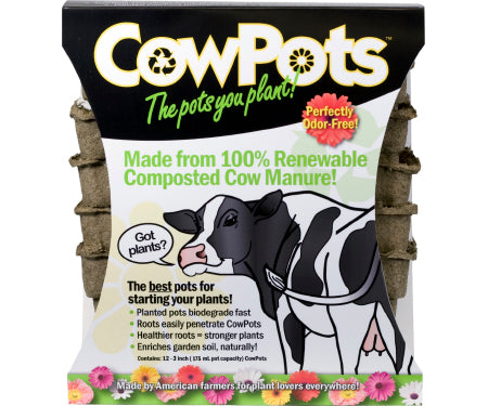 "CowPots Square 3"" - 12 pack"