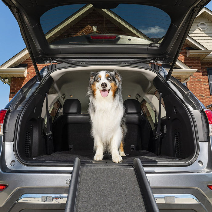 Petsafe Happy Ride™ Folding Dog Ramp