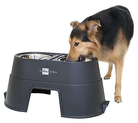 "Our Pets Healthy Pet Diner 12"" Black"