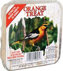 Craft Orange Suet Treat, 11oz