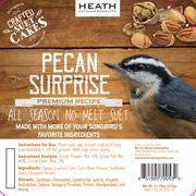 Pecan Surprise Premium Crafted Suet Cake - 11.75 oz.