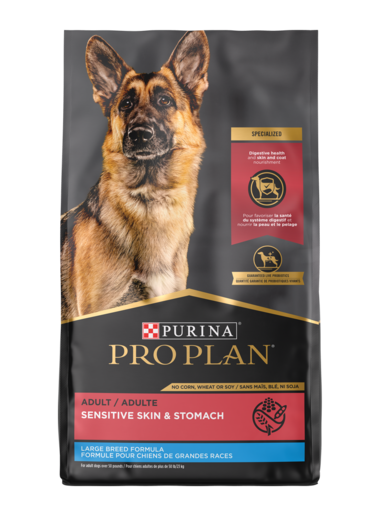 Purina Pro Plan Adult Large Breed Sensitive Skin & Stomach Salmon & Rice Formula Dry Dog Food