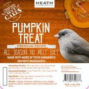 Pumpkin Treat Premium Crafted Suet Cake - 11.75 oz.