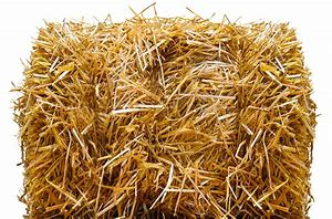 Straw Bale, Compressed, 80lbs