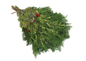"Christmas 18""-24"" Traditional Live Swag Evergreen"