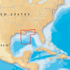 Navionics Platinum+ - Gulf of Mexico Central - microSD-SD [MSD-651P+]