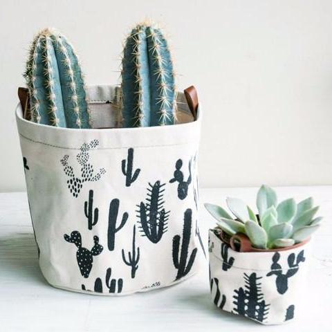 Small Cactus Print Planter - Favor & Fern