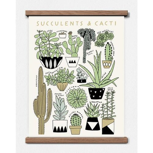 Succulent & Cacti Identification Print - Favor & Fern
