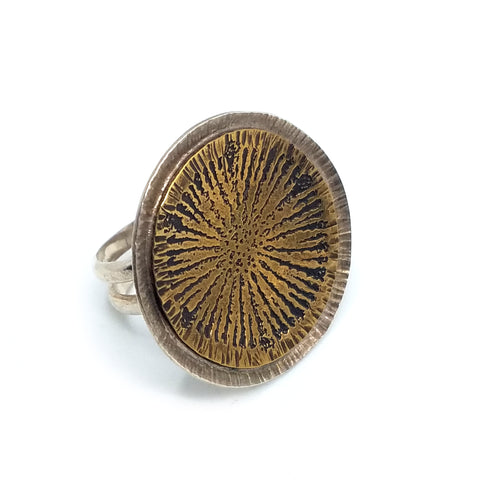 Diatom Burst Ring