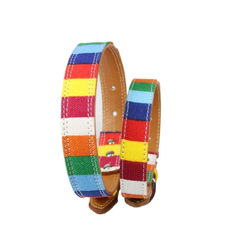 Designer Pet Collar -All Proceeds Goes Towards Saving Animals