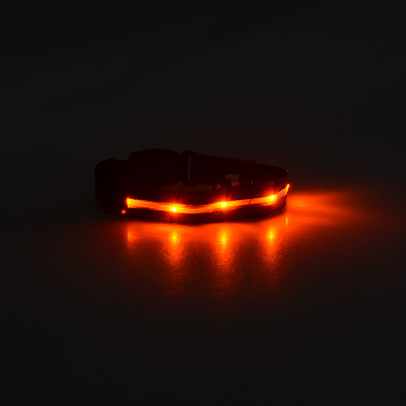 LED Wire Mesh Collar
