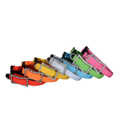 Light Emitting Dog Collar -All Proceeds Go Towards Saving Animals
