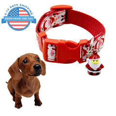 Fun Printed Collars For Pets / Leashes