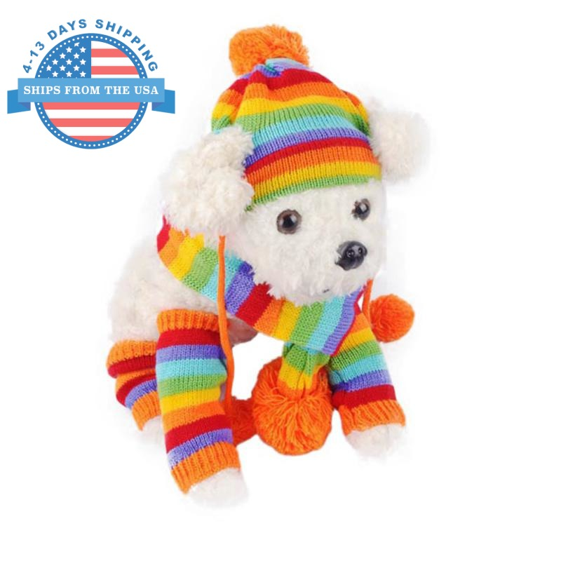 Puppy Colorful Wear Orange / Xs Accessories