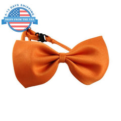 Decorative Pet Bowtie Accessories