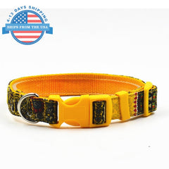 Fun Printed Collars For Pets Yellow Pattern / Leashes