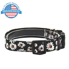 Fun Printed Collars For Pets Black Floral / Leashes