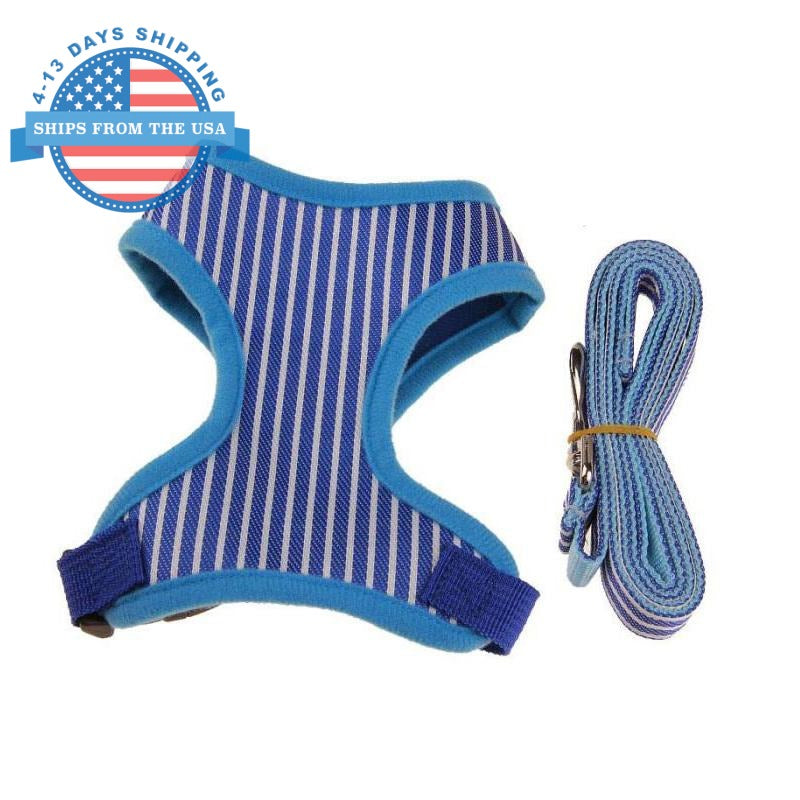 Striped Vest Harness Blue / L Harnesses