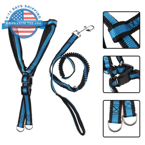 Dog Harness And Elastic Lead Blue / L Harnesses