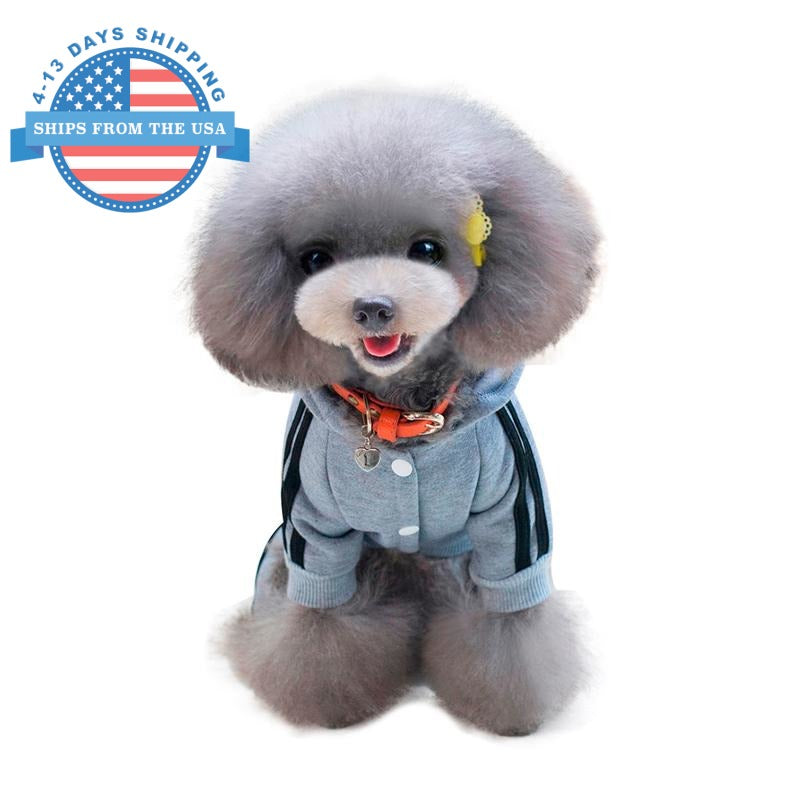 Sports Dog Costume Gray / L Clothes