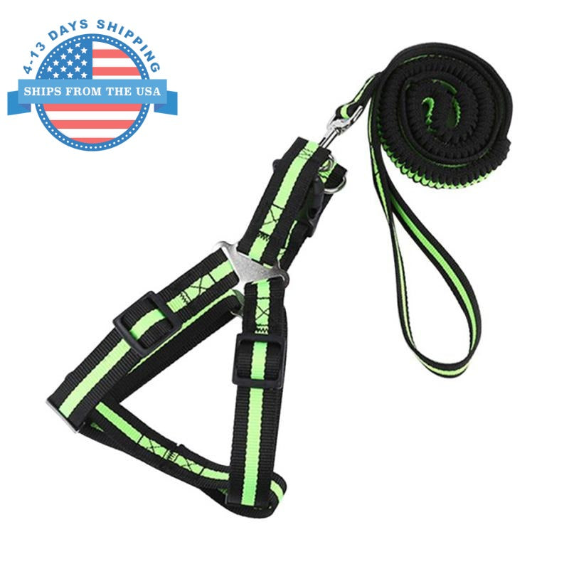 Dog Harness And Elastic Lead Green / L Harnesses