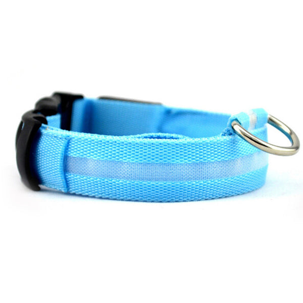 LED Collar (All Proceeds Go Towards Saving Animals)!