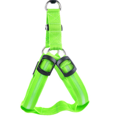 Night Safety LED Harness -All Proceeds Go Towards Saving Animals