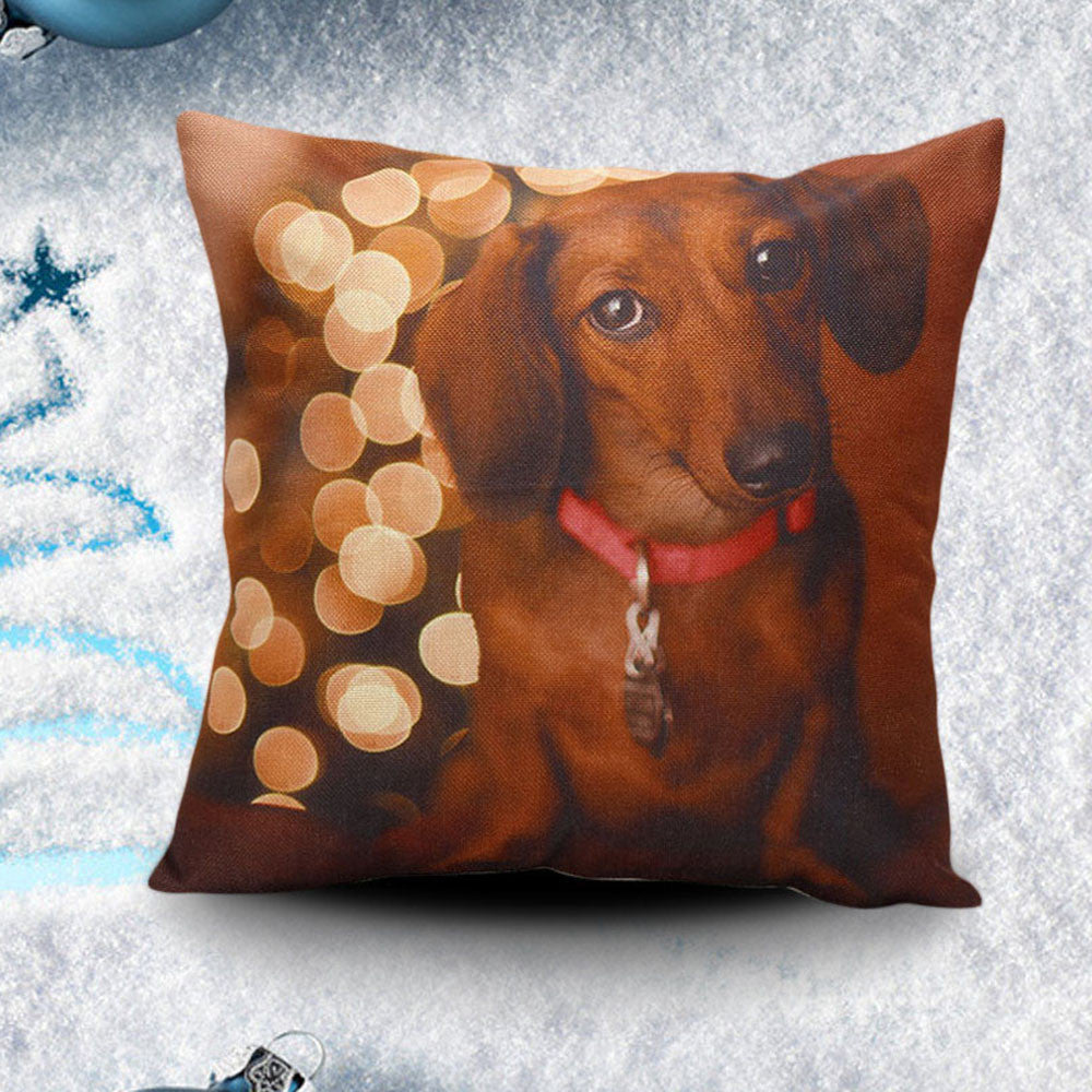 Support Our Rescue Saucy Pillow -All Proceeds Go Towards Saving Animals