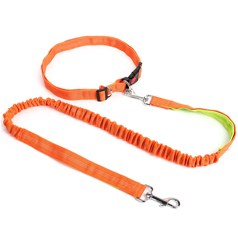 Hands Free Dog Leash -All Proceeds Go Towards Saving Animals