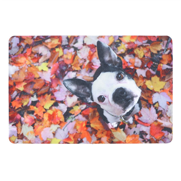 Absorbent Dog Pattern Door Mat 3D Simulation Animal Dog Thick Non-slip Interior Door Mat