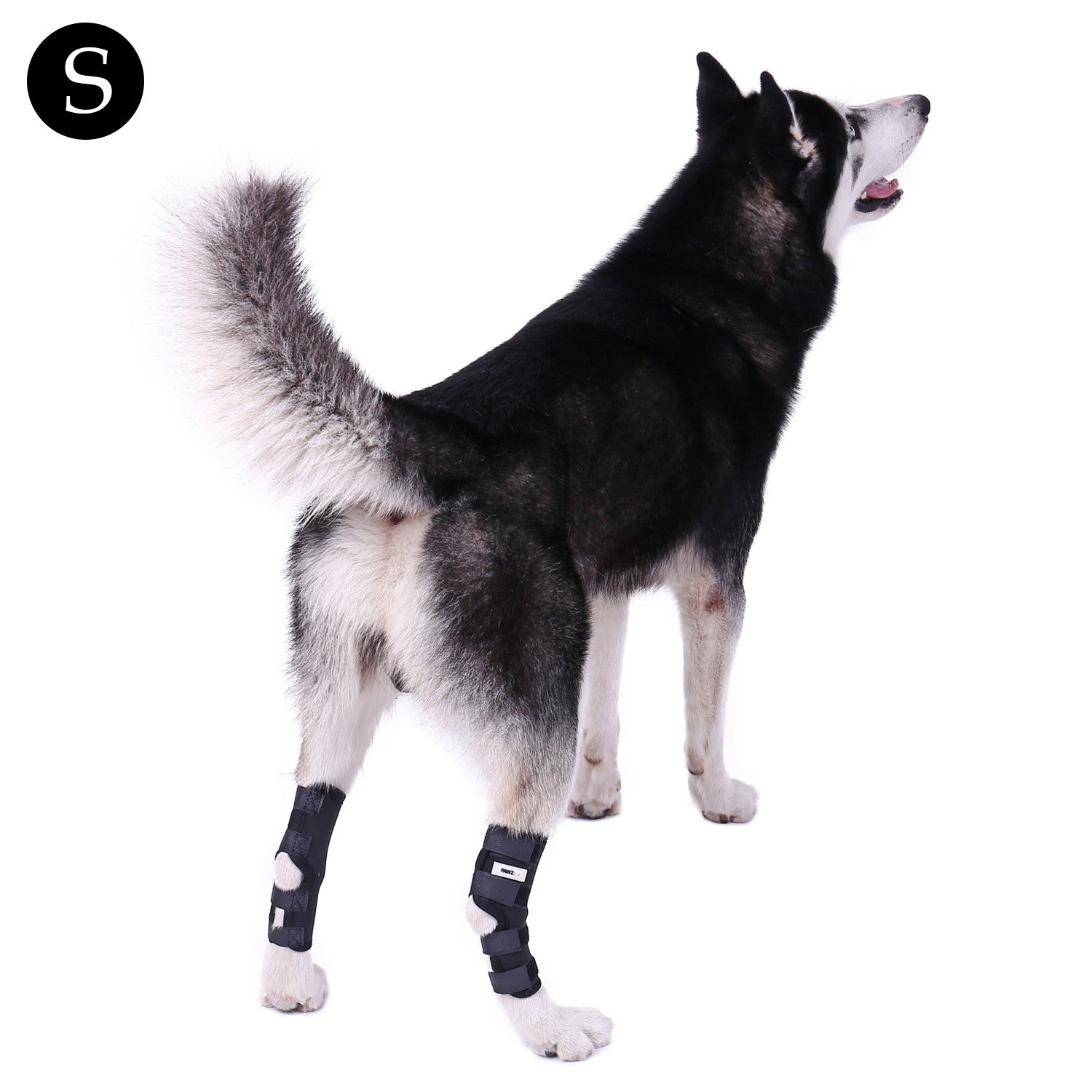 2 PCS Pet Knee Pads Dog Back Leg Brace Pet Protector Dog Canine Hint Leg Brace Wraps Injury Fixed Knee Pads Dog Feet Cover