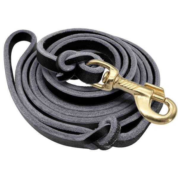1.5M/2.5M Leather Training Leash -All Proceeds Goes Towards Saving Animals