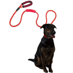 Dog Leash with 2 Padded Handle Reflective Nylon Rope Leashes